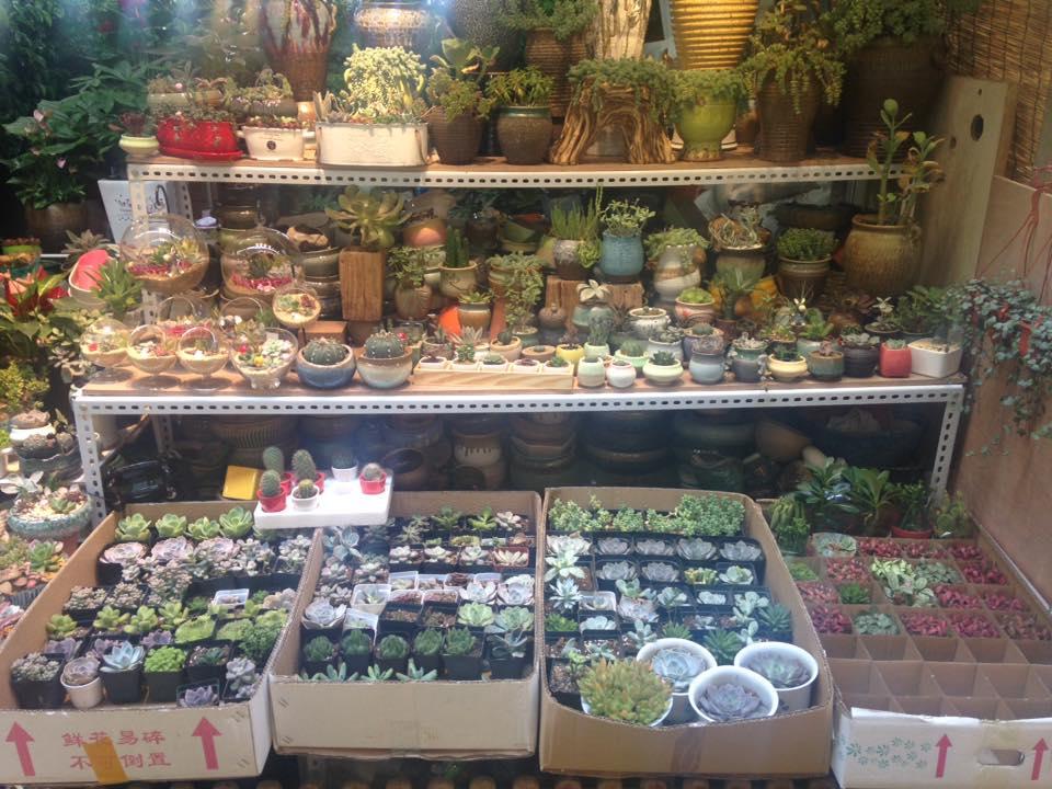Shanghai Longbai Flower Market