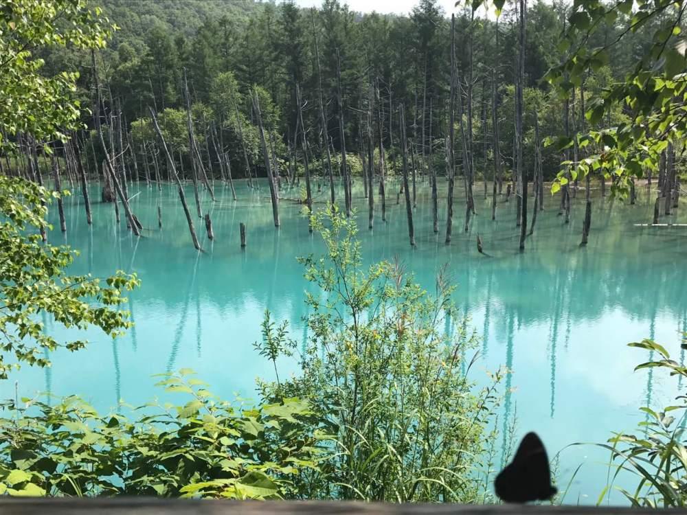 Furano Blue Pond